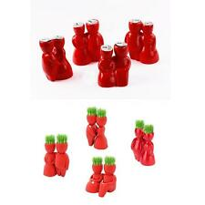 Creative Plant Bonsai Seeds Mini Potted Flower Seeds Red Lover Pot For Decora