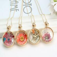 Natural Dried Flowers Locket Pressed Plant Round Pendant Necklace New Jewelry