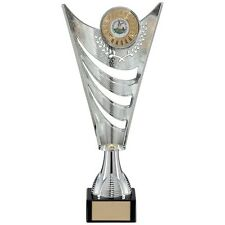 Personalised Silver Multi Sport Cup Trophy Award, Any Text Engraved Free