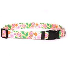 Dog Puppy Designer Collar - Yellow Dog - Made In USA - Flower Patch