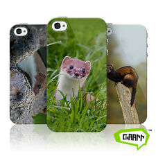 Stoats , Weasels and Polecats Protective Snap on iPhone 4 Case Cover