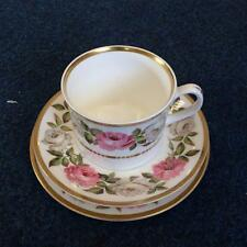 Trio Royal Worcester Royal Garden Tea Cup Saucer Plate