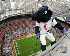 Houston Texans NFL Mascot Photo RZ217 (Select Size)