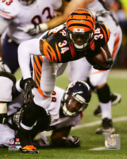 James Wilder Jr. Cincinnati Bengals 2015 NFL Action Photo SF144 (Select Size)