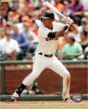 Ehire Adrianza San Francisco Giants 2014 MLB Action Photo (Select Size)
