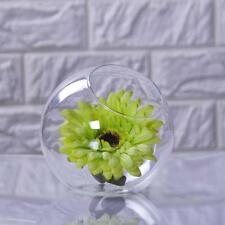 Glass Globe Flower Plant Pot Vase Stand Holder Hydroponic Terrarium Container