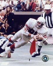Jackie Smith St. Louis Cardinals NFL Action Photo EA009 (Select Size)