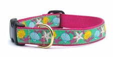 Any Size - Up Country - Made In USA - Designer Dog Puppy Collar - Reef