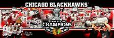 NHL Hockey Chicago Blackhawks 2013 Stanley Cup Photoramic #4002