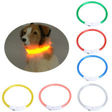 Rechargeable USB Waterproof LED Flashing Light Band Safety Pet Dog Collar New