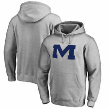 Ole Miss Rebels Fanatics Branded Primary Team Logo Pullover Hoodie - Ash - NCAA