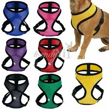 Pet Control Harness for Dogs Puppy Cats Soft Walk Collar Safety Strap Mesh Vest