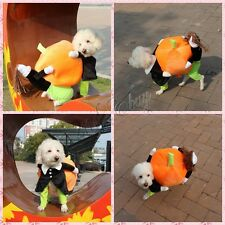 Puppy Pet Dog Cat Costume Clothes Pumpkin Costumes Party Halloween Jacket Dress