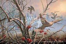 David Maass Autumn Orchard - Ruffed Grouse Remarqued on Paper