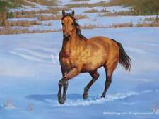 Chris Cummings Thats My Horse Quarter Horse Buckskin Artists Proof on Paper