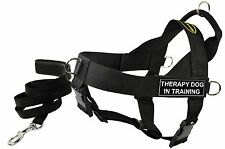 DT UNIVERSAL Working Harness, Padded Puppy Leash, Patch: THERAPY DOG IN TRAINING