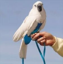 Avian Fashions FlightSuit for the Birds with Leash Combo