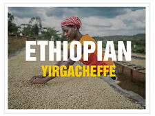 up to 100 lbs Ethiopian Yirgacheffe Washed Grade 2 Green UnRoasted Coffee Beans
