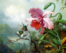 TWO HUMMINGBIRDS PINK ORCHID MOUNTAIN FOREST PAINTING MARTIN JOHNSON HEADE REPRO