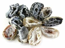 Crystal Allies Materials: Polished Natural Agate Geode - w/ Authentic Stone Card