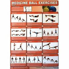 Productive Fitness Posters Medicine Ball Basics Home Workout Exercises Bodyball