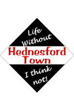 Hednesford Town Car/window signs / Personalised signs / slap-on magnets