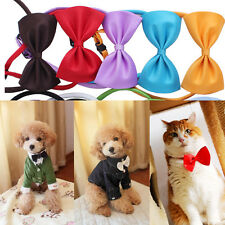 2x Chic Hot Dog Cat Pet Puppy Toys Kids Cute Bow Tie Necktie Collar Clothes New
