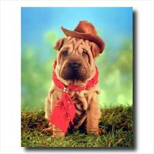 Shar Pei Puppy Dog In Western Cowboy Hat Wall Picture
