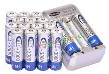 16x 3000mAh AA 1.2V Ni-MH rechargeable battery BTY for RC Toy Camera MP3+Charger