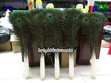 10-500pcs natural 10-40inches/25-100cm peacock feather eye  wedding decoration