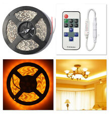 5M 5050 SMD 300LED Waterproof LED Strip Light +11 Key Wireless Controller