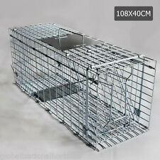 Large Trap Humane Big Live Animal Possum Rat Feral Dog Fox Cat Catcher Wire Cage