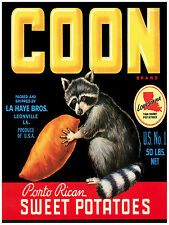 270.Art Decor POSTER.Graphics to decorate home office.Coon Sweet Potato cover Ad