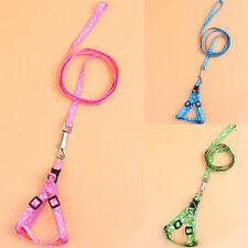 2016 New Doggie Adjustable Cat Harness Paw Bone Fashion Lead Rope Chest Strap