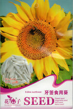 1 Pack 20 Edible Sunflower Seeds Helianthus Annus Beautiful Garden Flowers A277