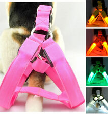 LED Glow Flash Light Dog Puppy Belt Harness Leash Tether Pet Safety Collar Rope-