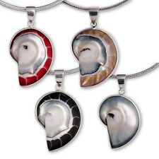 Nautilus Shell Pendant Sterling Silver Natural Jewelry pdsh039