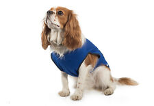 Ancol Pet Dog Cooling Coat - Cool Down your Dog in Hot Weather
