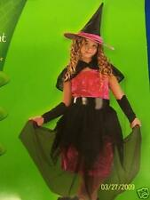 Disguise Fuchsia Midnight Witch Pink Child Costume