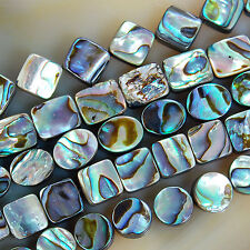 """Natural Abalone Shell Gemstone Beads 15.5"""" Square Oval Coin Oblong Etc"""