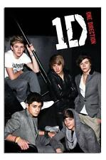 One Direction Stairs Large Maxi Wall Poster New - Laminated Available