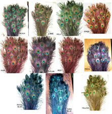 """100 Stem Dyed Iridescent Peacock Eye Feathers 30-35"""" length 11 colors available"""
