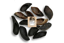 HDP Large Hooves Natural Dog chew bone Long lasting Made in USA