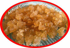 REHYDRATES TO 1-40 LIVE CUPS WITH COMMERCIALLY DRIED WATER KEFIR GRAINS SCOBY'S