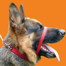 CANNY COLLAR BEST TRAINING COLLAR ON THE MARKET (RED) WE'RE AN AUTHORISED SELLER