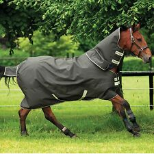 Amigo XL Horseware Heavy Turnout Blanket - Green/Otter - Different Sizes - SALE!