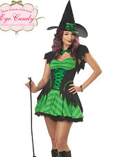 Sexy Green Womens Hocus Pocus Witch Adult Halloween Costume Dress Set S-2XL