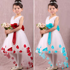 Baby Girls Princess Flower Petals Party Wedding Bridesmaid Christmas Tulle Dress