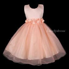 NEW Flower Girl Wedding Pageant Party Bridesmaid Dress Wears Orange SZ 4-9 Q484