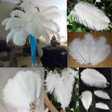 Wholesale 5/20/50/100pcs High Quality Natural WHITE OSTRICH FEATHERS